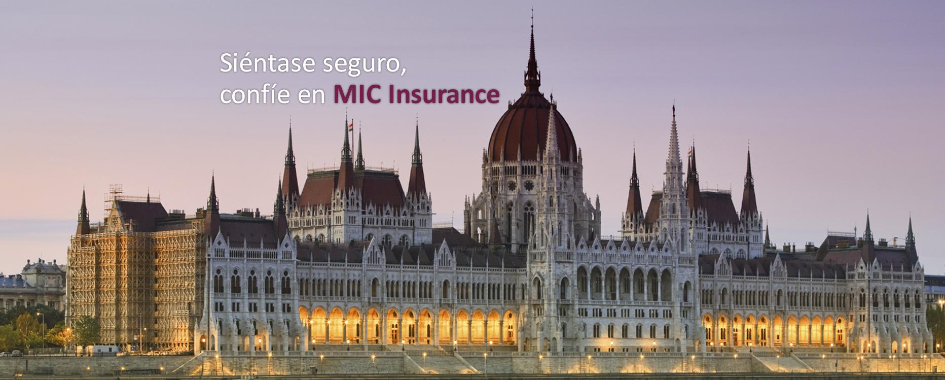 Seguros para la Construcción - MIC Insurance